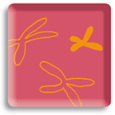 https://downloadimedode.s3.amazonaws.com/arzt_premium/44185-prof-dr-bernd-seifert/Reproduktionsmedizin%20Regensburg.png